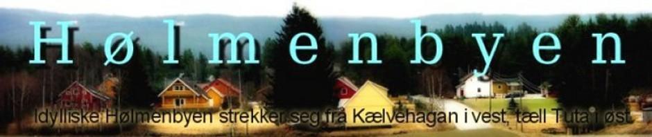 Holmenbyen online – Et lite stykke Lierfoss
